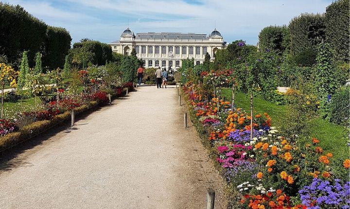 botaniska trädgården jardin des plantes