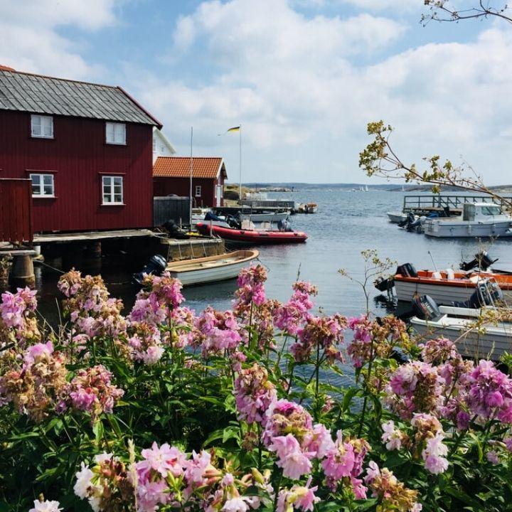 stora öar i Sverige orust