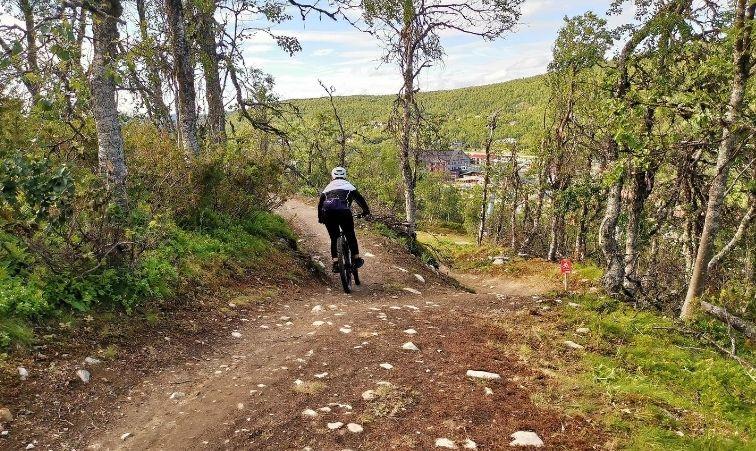 downhill tänndalen