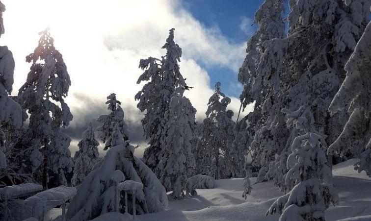skidorter nära stockholm