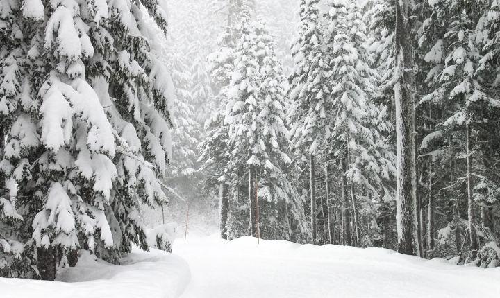 åka längdskidor i borlänge