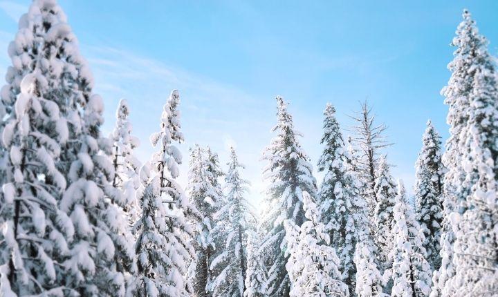 åka längdskidor i gävle
